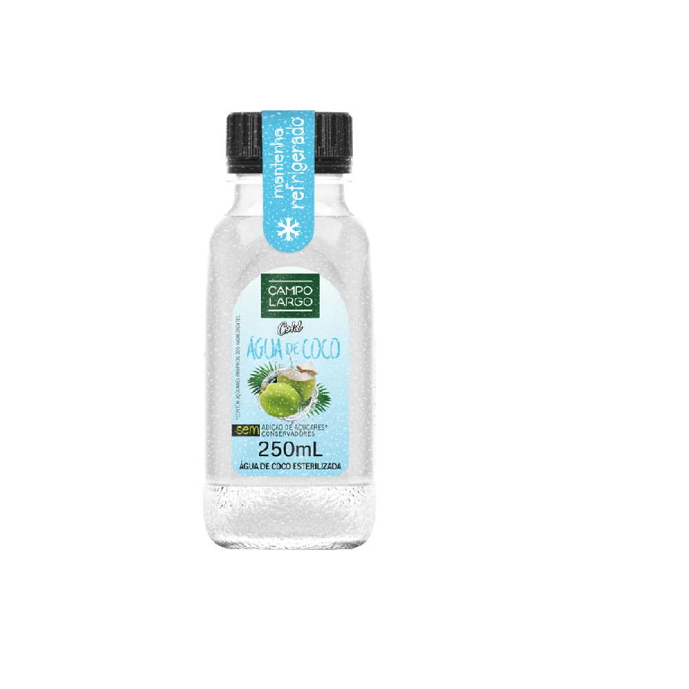 CAMPO LARGO AGUA DE COCO 250ML